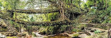 Monday Flashback 17 – Double Decker Living Root Bridge Cherrapunji