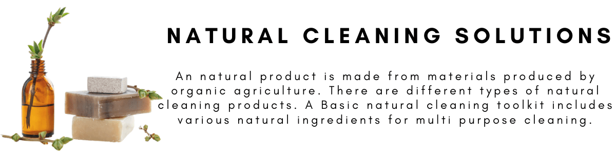 Natural Cleaners econaur